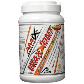 WaxIont Professional Glycogen Loader 1000 gr